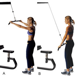 Tank-Top Ready Triceps   Sprint 2 the Table  Tricep Pulldown Vs Pushdown