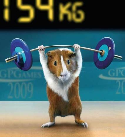 http://www.sprint2thetable.com/wp-content/uploads/2012/03/ham-me.jpg