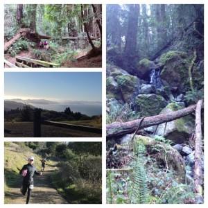 2_7-Trails1