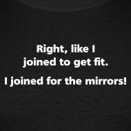 joined for the mirrors