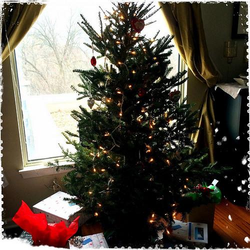 Christmas Tree 12.21.14