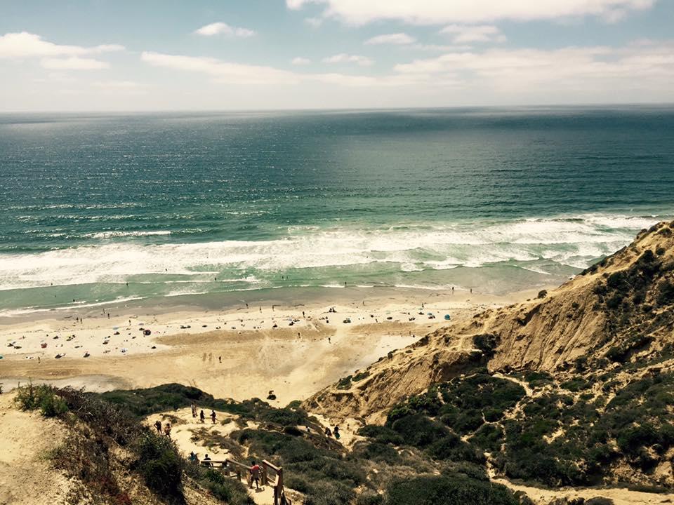 Black's Beach arial