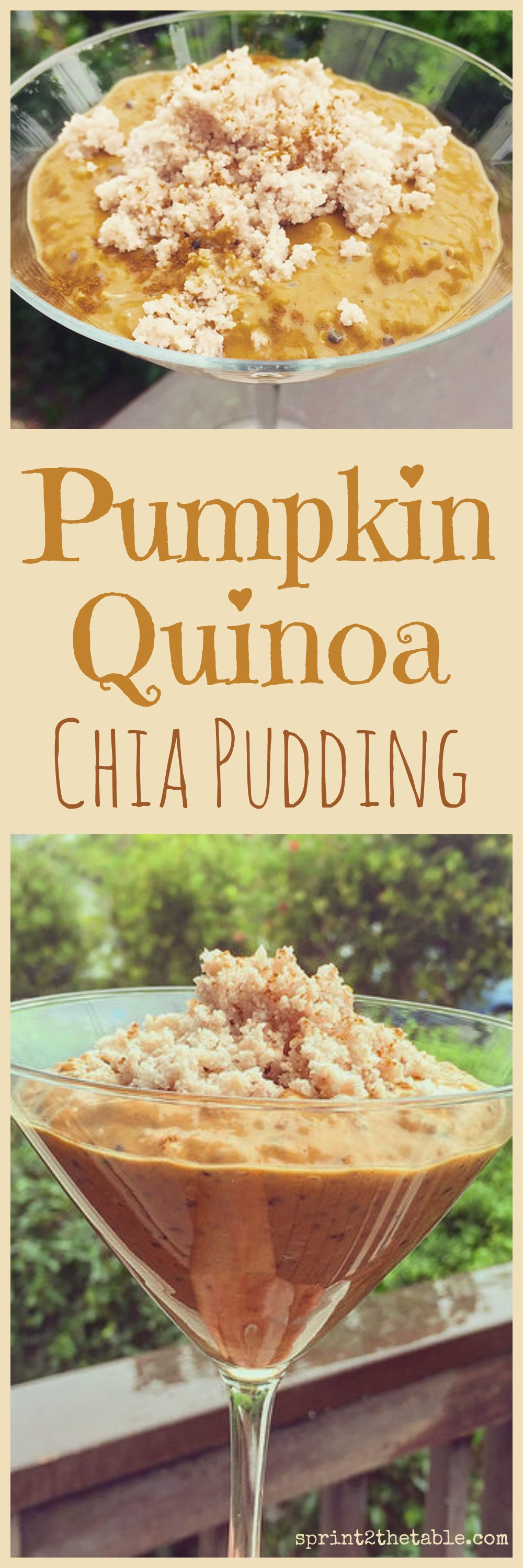 Pumpkin Quinoa Chia Pudding Halloween Recipe