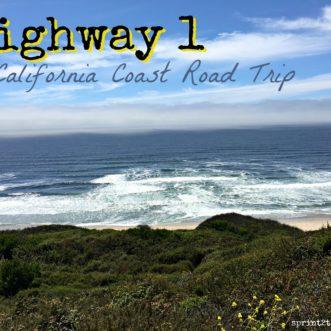 Highway 1 A California Coast Road Trip