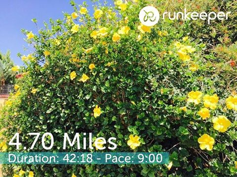 Hilly run in San Diego