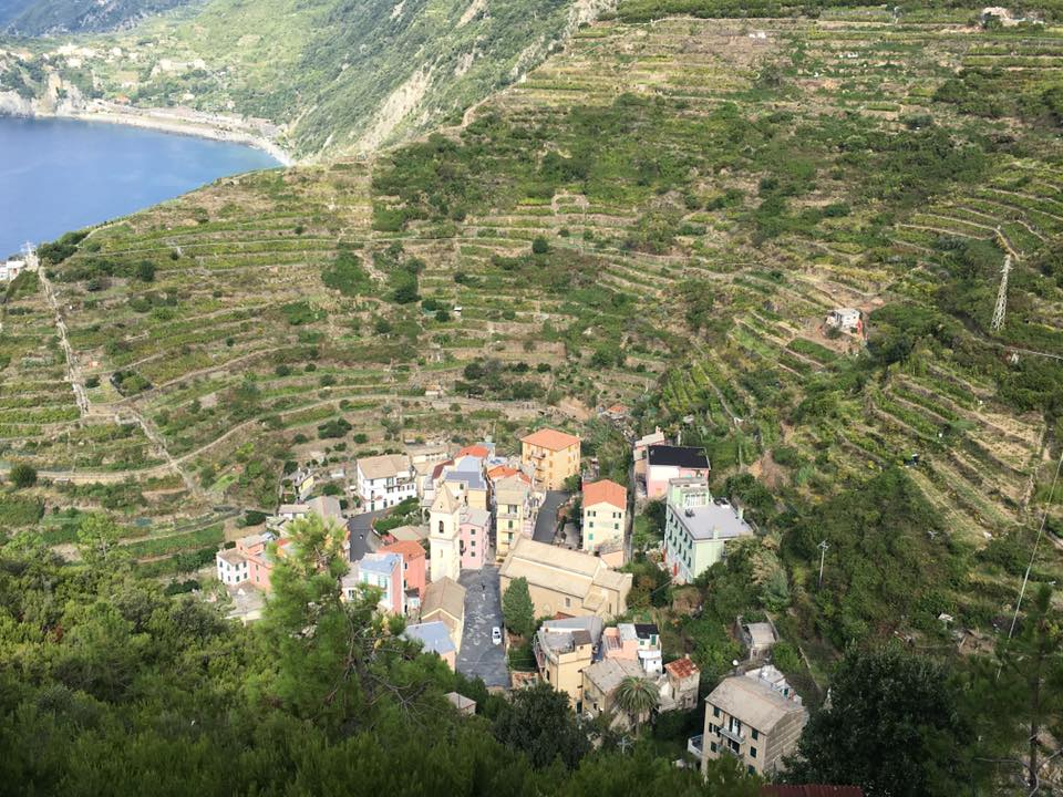 Looking down on Manarola from the Beccara trail