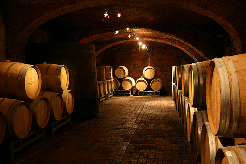 Pira wine's cellars in Barolo