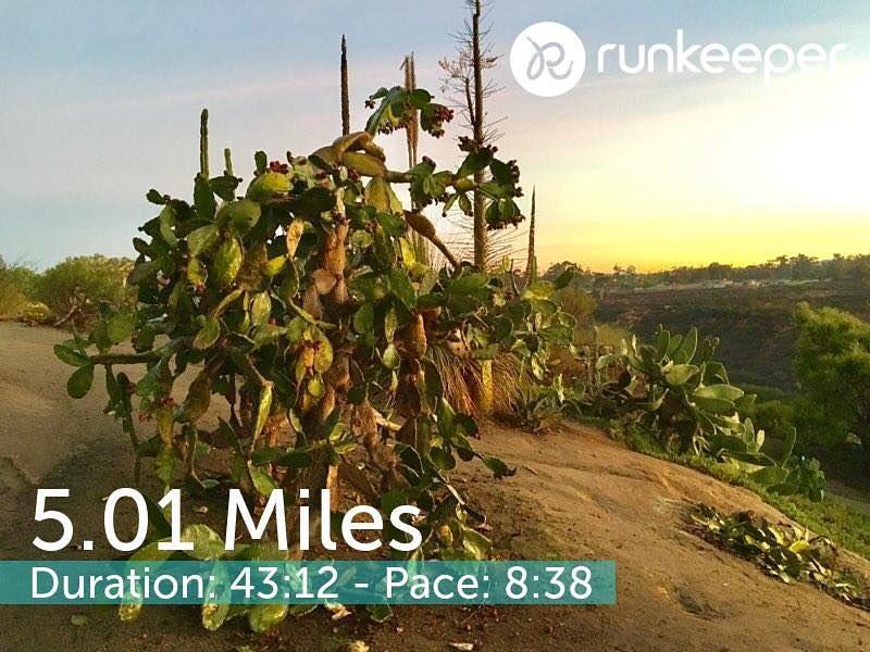112916 run