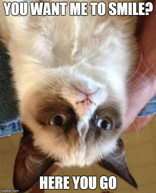 Grump Cat Upside Down Smile