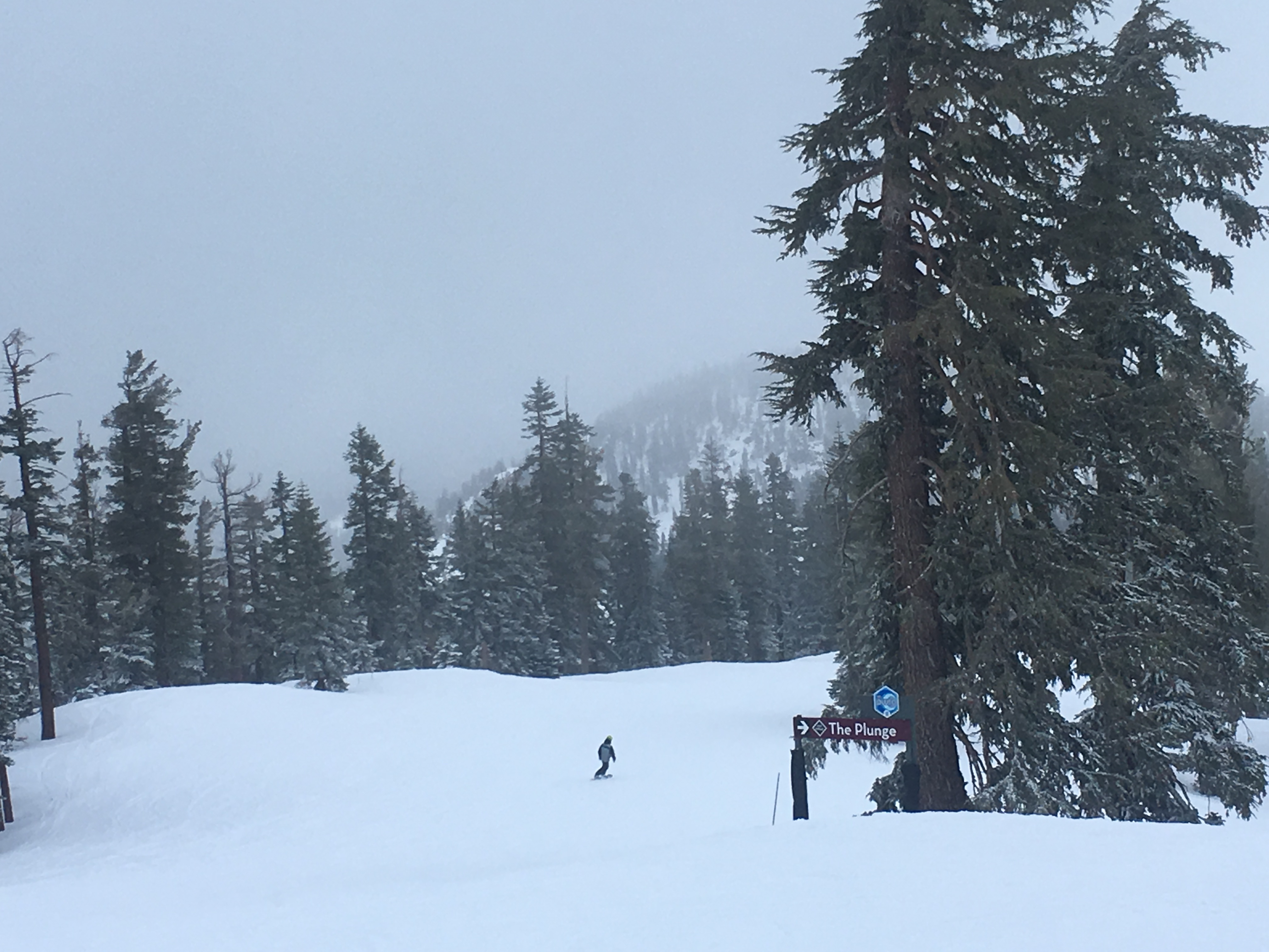 Northstar Mountain trails